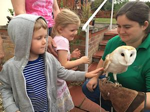 Picture of Emily and Stanley meeting the barn owl